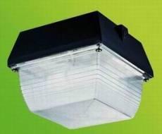 专业生产低频无极灯 客厅吸顶灯 无极灯