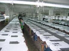廠家大量供應廣告衫文化衫體恤衫