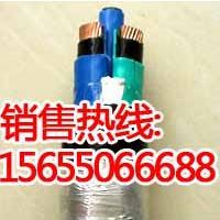 江南区NH-RVS电缆 供应商