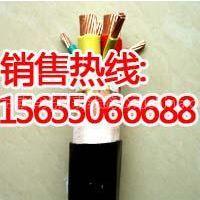 历下区NH-RVS电缆 国际标准