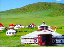 豪华大蒙古包 直径15米 面积176平米