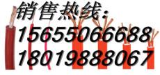 怒江傈傈族自治州JFE电机引接线 2 0.75