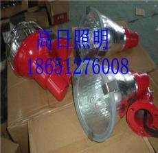 CXTG64投光燈 GXTG64工廠燈 SDTG364鈉燈