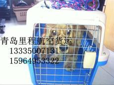 青島機場寵物空運海鮮空運