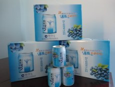 代理蓝海舰队蓝莓汁品牌有亮点前景一片光明