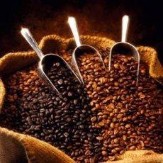 印度尼西亚咖啡豆进口清关