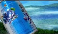 蓝海舰队果汁饮料助推您早日踏上成功的彼岸