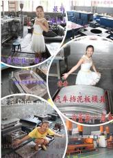 浙江黄岩塑料模具厂 生产快餐框模具