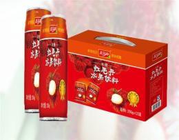 饮料批发冰糖水果饮料红毛丹广州饮料生产