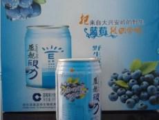 蓝莓饮料暂露头角领航果蔬界