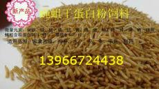 蝇蛆活性蛋白粉