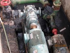 專業供應濃稠污泥泵價格 高粘度污泥泵品牌