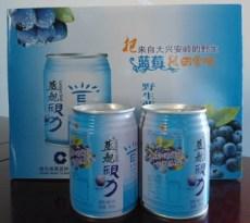 蓝莓饮料潜力非凡