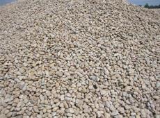 天然鹅卵石 公园绿化铺路专用鹅卵石生产厂