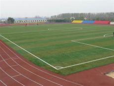 人造草坪足球场价格