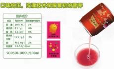 湖南红杨梅汁彰显金牌品质红遍天下