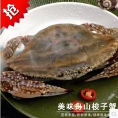 特价直销澳龙龙虾海鲜鲜活虾 速鲜阁